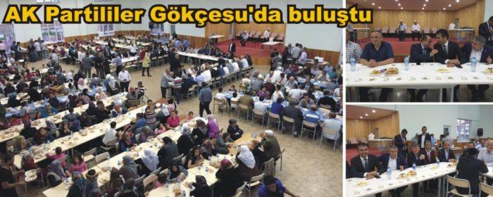 AK Partililer Gökçesu'da buluştu