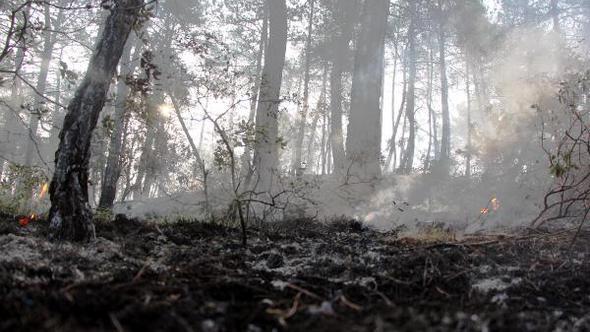 Orman yangınında soğutma çalışmaları yağmur etkisi