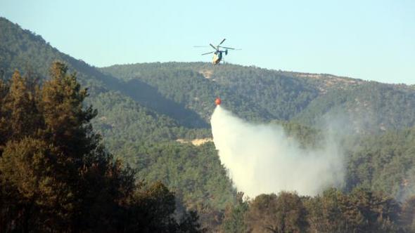 Bolu'da 2018 yılında 20,92 hektar ormanlık alan yandı