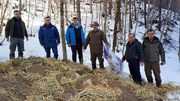 Mengen'de yaban hayvanları için doğaya yem bırakıldı