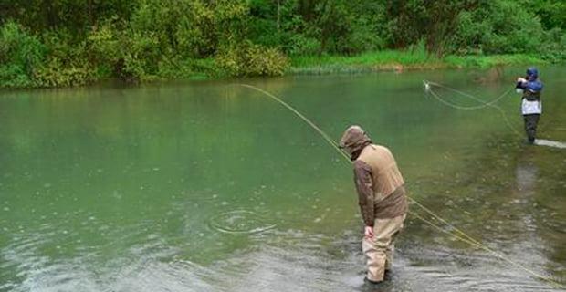 Mengen'de  kaçak avcılıkla mücadele